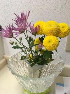 クリスタル花瓶の菊の花の写真・画像素材[1583612]