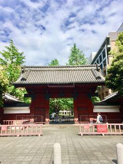 東京大学の赤門の写真・画像素材[1476082]