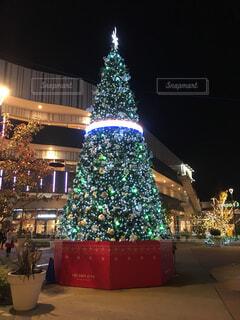 夜ライトアップされたクリスマス ツリーの写真・画像素材[1476153]