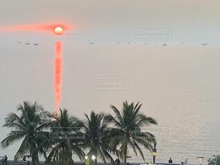 マニラ湾の夕陽の写真・画像素材[2846365]