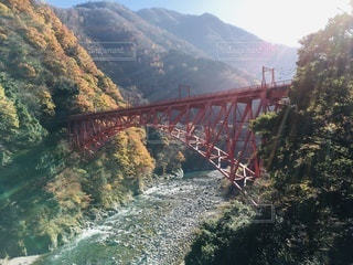 朝日を浴びる黒部渓谷鉄道の新山彦橋の写真・画像素材[3524232]