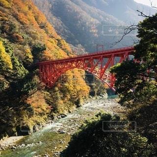 朝日を浴びる黒部渓谷鉄道の新山彦橋の写真・画像素材[3524454]