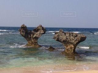 自然の写真・画像素材[47756]
