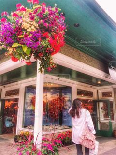 花の街🌸ビクトリアの写真・画像素材[1480425]