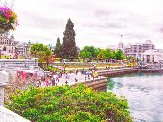 ビクトリアの港風景の写真・画像素材[1491988]