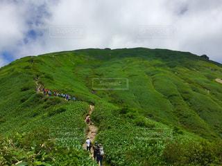 緑豊かな山の景色の写真・画像素材[1478130]