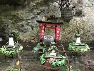 昇仙峡で見つけたかえるの写真・画像素材[1479417]