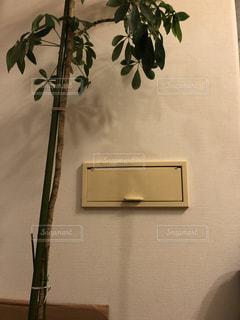 我が家のポストの写真・画像素材[1496221]