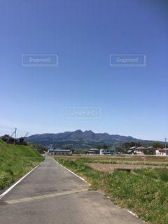 田んぼ道の写真・画像素材[1479237]
