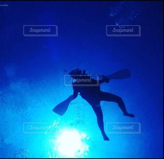 自由に泳げるよの写真・画像素材[1485208]