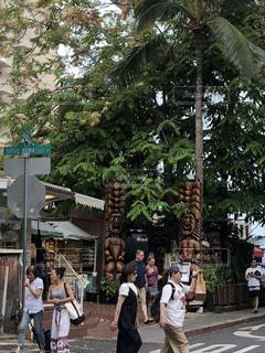 ハワイの写真・画像素材[1486388]