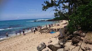 ハワイのビーチの写真・画像素材[1486391]