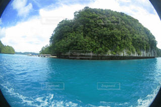 パラオの島々の写真・画像素材[1491983]