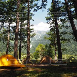 キャンプの写真・画像素材[1479914]