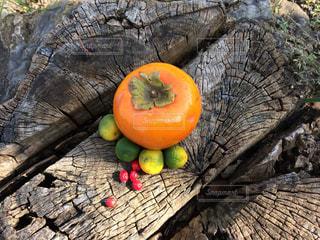 実りの秋の写真・画像素材[1558025]