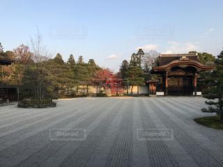 仁和寺の写真・画像素材[1490157]