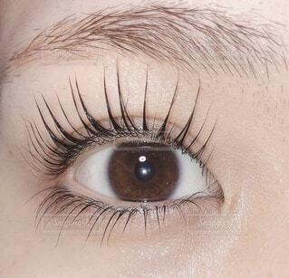 まつ毛の長い目の写真・画像素材[4877070]