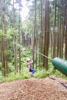 森の中をジップラインで進む女の子🌲の写真・画像素材[1490277]
