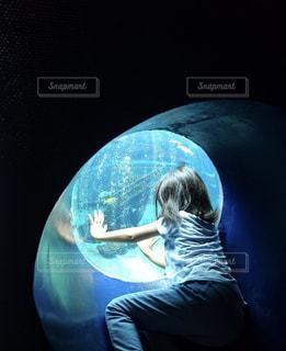 水族館の丸窓から水槽を覗く人の写真・画像素材[1497770]