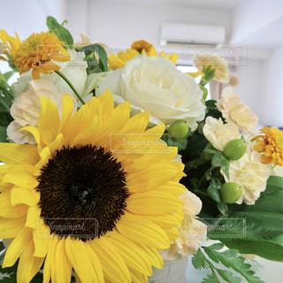 ひまわりとバラの花束の写真・画像素材[1497986]