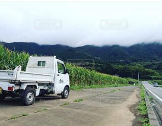 農道に停まる軽トラックの写真・画像素材[1499366]