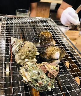 BBQグリルの上に貝🐚の写真・画像素材[1516465]