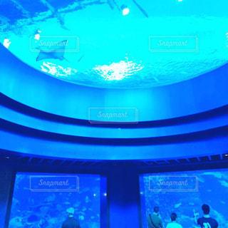 シンガポールの水族館の写真・画像素材[1530840]