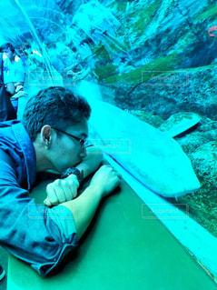 シンガポールの水族館で男性と鮫の写真・画像素材[1567240]