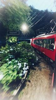 2018年の箱根登山鉄道の夜のあじさい電車の写真・画像素材[1578892]