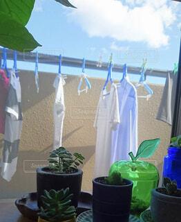 干してある洗濯物の写真・画像素材[1582830]