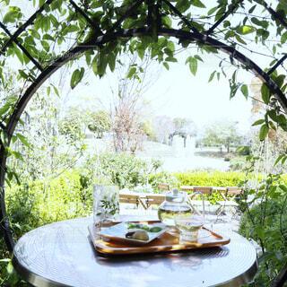 庭でハーブティーを飲む癒しのひとときの写真・画像素材[2028917]