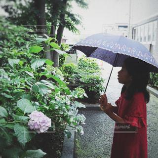 傘を持って雨の中に立っている女の子の写真・画像素材[2200300]