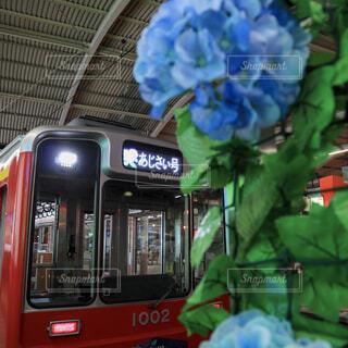 箱根登山鉄道の電車、夜のあじさい号の写真・画像素材[2237713]