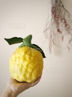 半分食べたリンゴを握る手の写真・画像素材[3975970]