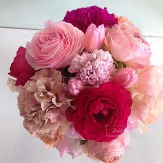 ピンクの花の花束の写真・画像素材[1484710]