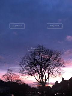 空の写真・画像素材[2325087]