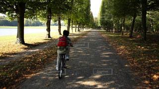 サイクリングを楽しむ男の子の写真・画像素材[1485788]
