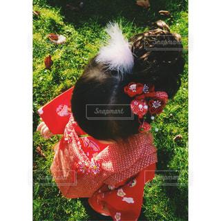 彼女は髪に赤い花の写真・画像素材[1488508]