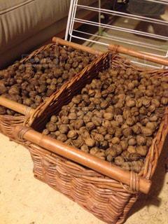 胡桃の収穫の写真・画像素材[1509950]