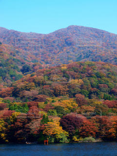 色とりどりの山の写真・画像素材[1488507]
