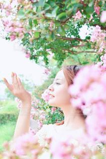 花に包まれての写真・画像素材[1531371]