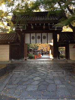秋の京都の写真・画像素材[1489854]