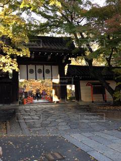 秋の京都の写真・画像素材[1489855]