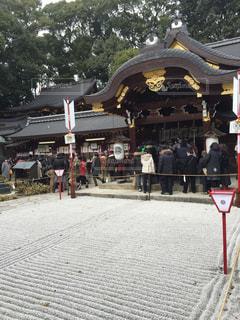 今宮神社の初詣の写真・画像素材[1562223]