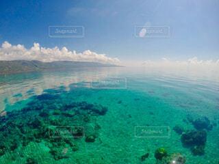 透き通る美しい海の写真・画像素材[1487297]