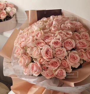 花の写真・画像素材[1502838]