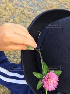 花飾りの写真・画像素材[1511419]