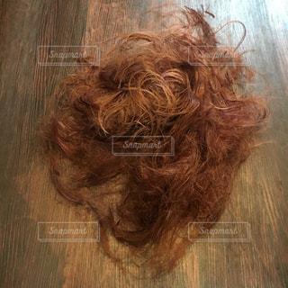 髪の写真・画像素材[463797]