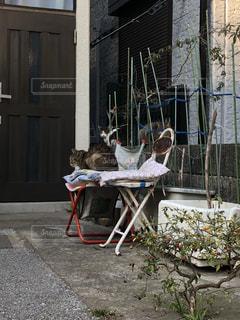 建物の前に座っている椅子の写真・画像素材[1025924]