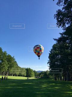 森の中で熱気球の写真・画像素材[1489645]